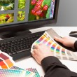 Designer at work. Color samples. — Stock Photo #20880645