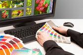 Designer no trabalho. amostras de cor. — Foto Stock