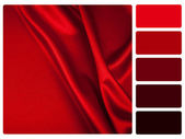 Red satin colour palette swatch — Stock Photo