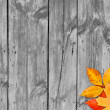 Autumn leaves over wooden background. Copy space. — Stock Photo #30105171