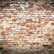 Brick wall with vintage look — Stock Photo #31565793