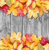 Autumn leaves over wooden background. Copy space. — 图库照片