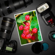 Camera lens and image on black background — Stock Photo