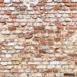 Brick wall with vintage look  — Foto Stock