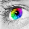 Spectrum multicolored Eye Macro — Stock Photo #8868243