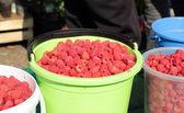 Berry - framboesas — Foto Stock