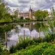 Waddon pond — Stock Photo