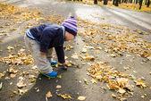 çocuk sonbahar park — Stok fotoğraf