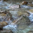 Mountain stream — Stock Video #12678270