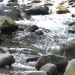 Mountain stream — Stock Video