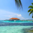 Tropical Paradise at Maldives with palms and blue sky — Stock Video #12777338
