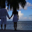 Romantic couple standing next to palm tree — Stock Video