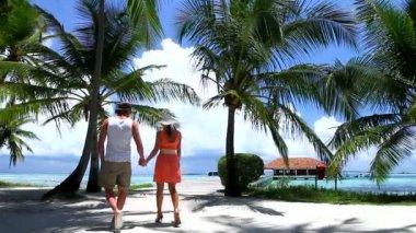 Romantic couple walking on bridge between palm trees — Stock Video