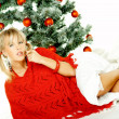 Beautiful Christmas 1 — Stock Photo #1956432