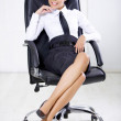 Business Woman — Stock Photo #1963741