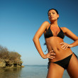Black Bikini — Stock Photo #1969023
