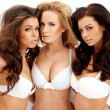 Three beautiful sexy curvaceous young women — Stock Photo #44702927