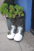 Shoes with flowers. clay pot. Macroom Ireland — Stock Photo