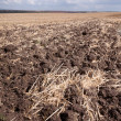 Newly ploughed field - Stock Photo