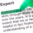 The word Expert — Stock Photo