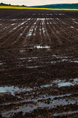 Plowed black earth — Stock Photo