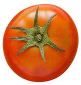красный помидор, изолированные на белом фоне. — Стоковое фото