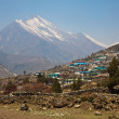 Himalayan village Thamo — Stock Photo