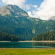 Mountain scenery, National park Durmitor, Montenegro — Stock Photo