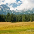 Stock Photo: Mountain scenery, National park Durmitor, Montenegro