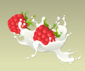 Milk splash with raspberries. — Stock Vector