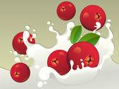 Milk splash with cranberries. — Stock Vector