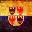 Trentino south tyrol flag — Stock Photo