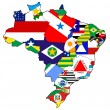 Administration on map of brazil — Stock Photo