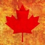 Canada flag — Stock Photo #45423665