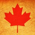 Canada flag — Stock Photo #45423669