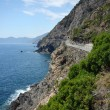 Stock Photo: Videll Amore Riomaggiore