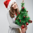 Woman in santa hat holding christmas tree — Stock Photo