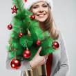 Woman in santa hat holding christmas tree — Stock Photo #34537771
