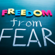 Постер, плакат: Freedom from fear