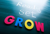 Ready, set, grow! — Foto de Stock
