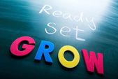 Ready, set, grow! — Stock Photo
