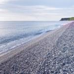 Beautiful seashore with pebbles under morning light — Stock Photo #45950267