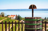 Wine-press at Lake Balaton,Hungary — Stock Photo