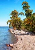 Krajobraz nad balatonem w jesieni, węgry — Zdjęcie stockowe