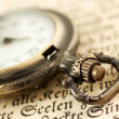 Pocket watch on book — Stock Photo #24369193