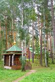 ганина яма. мужской монастырь — Стоковое фото