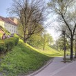 Getting up on a hill to the castle Wawel — Stock Photo #14332463