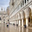 Venice. An piazza San Marco — Stock Photo