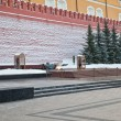 Tomb of the Unknown Soldier - Lizenzfreies Foto