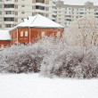 After the winter freezing rain. Urban landscape — Stock Photo